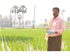 basf-india-rice-1